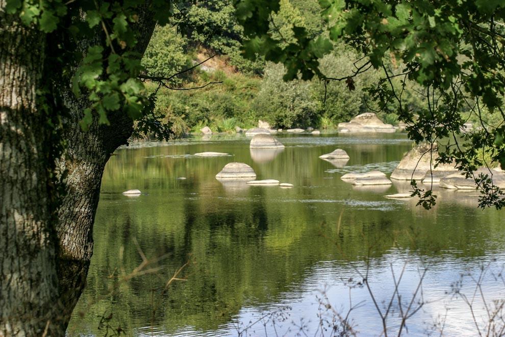 Passez vos vacances en Vendée et visitez St Laurent sur Sèvre