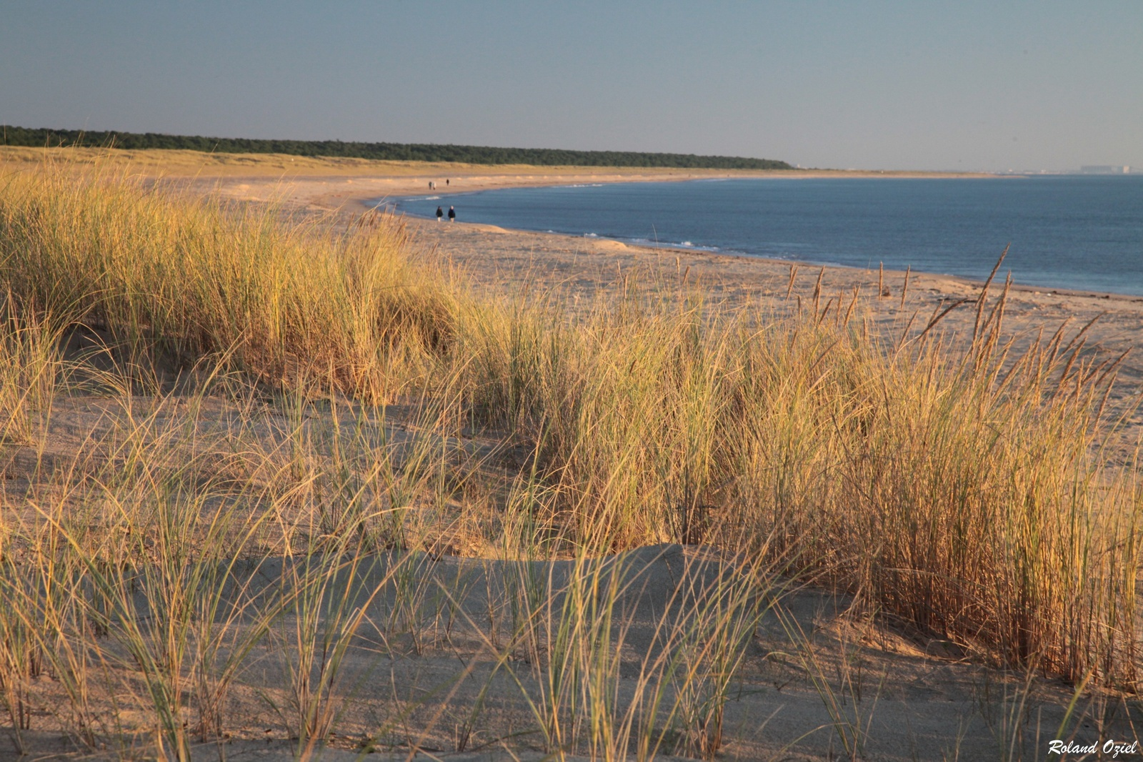 Chambre d'hotes proche des plages en Vendée