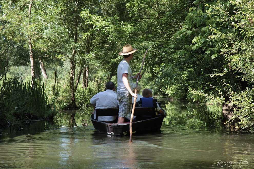 Se balader en barque sur la Venise verte en Vendée