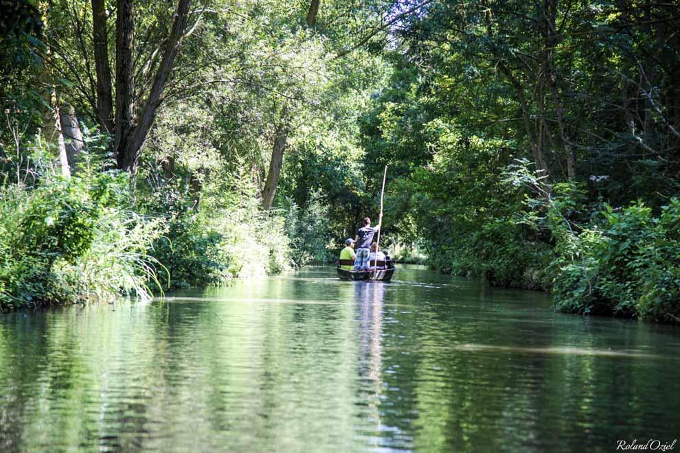 Balade en barque sur le Marais Poitevin